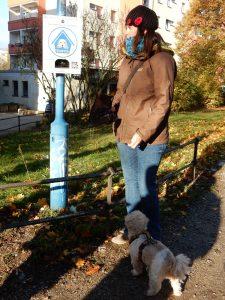 Aufmerksamt beobachtet Hund Harry, was Elisa Lange da mit den Tüten macht. Würde es nach ihm gehen, könnten überall solche Spender stehen...
